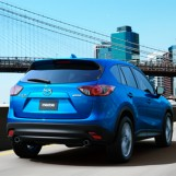 5 Top Crossovers that have Gained Quick Popularity